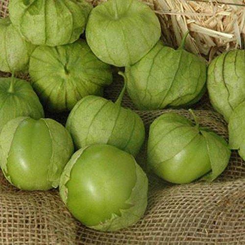 Portal Cool 10 - Semillas: Tamayo F1 Hybrid Tomatillo Semillas - para Salsas Verdes y Cocina Mexicana.!!!: Amazon.es