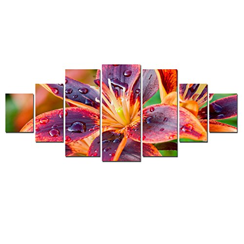 Startonight Huge Canvas Wall Art Multicolored Lily Flower, USA Large Home Decor, Dual View