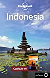 img - for Sureste asi tico para mochileros 4_4. Indonesia (Lonely Planet-Gu as de pa s) (Spanish Edition) book / textbook / text book