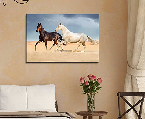 A White Horse and a Black Horse Running on Desert Against Beautiful Sky Wall Decor ation