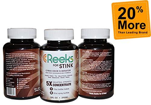 REEKS Orange Pet Odor Eliminator - 10 oz Industrial Strength Concentrate - Dog & Cat Urine Odor Remover & Feces, Vomit, Dead Rodents Smells - GET 20% More - Makes -