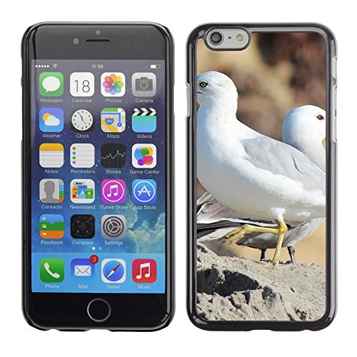 "Premio Sottile Slim Cassa Custodia Case Cover Shell // F00004480 oiseaux coulpe // Apple iPhone 6 6S 6G PLUS 5.5"""