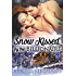 Snow Kissed by the Billionaire (Kissed Series)