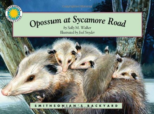 Opossum at Sycamore Road - a Smithsonians Backyard Book (Mini book) (Smithsonian Backyard) Sally M. Walker