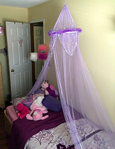 Purple Feather Metallic Moon and Star Trimmed Girls Bed Canopy by Three Cheers! (Image #2)
