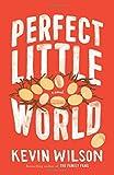 img - for Perfect Little World: A Novel book / textbook / text book