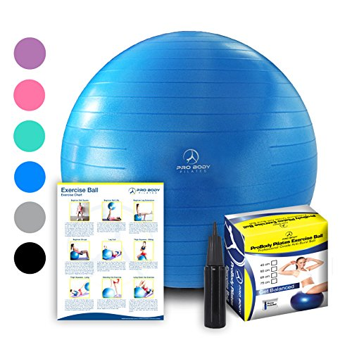 Exercise Ball - Professional Grade Anti-Burst Fitness, Balance Ball for Pilates, Yoga, Birthing, Stability Gym Workout Training and Physical Therapy (Blue, 55cm) by ProBody Pilates