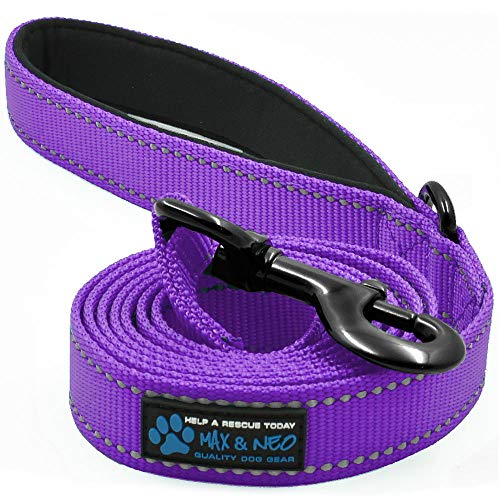 Max and Neo Reflective Nylon Dog Leash - We Donate a Leash to a Dog Rescue for Every Leash Sold (Purple, 6x1)
