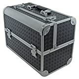 SRA Cases EN-AC-FC-B086-BK Toolbox, Fishing Tackle/Bait Case with Fold Out Trays, 14.1x11x8.5-Inch, Black