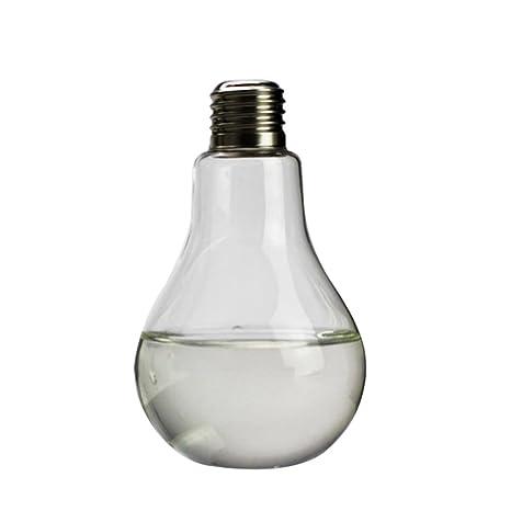 Bombilla Botella En Forma De Tabla Transparente Vidrio Florero Para Decoración Flor