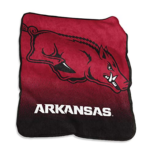 Logo Brands NCAA Arkansas Razorbacks Unisex Raschel Throwraschel Throw, Cardinal, N/A