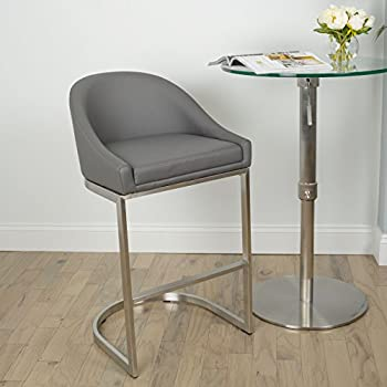 MIX Brushed Stainless Steel Faux Leather Grey 26-inch Seat Height Stationary Bar Stool & Amazon.com: MIX Brushed Stainless Steel Faux Leather Grey 26-inch ... islam-shia.org