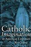 img - for The Catholic Imagination in American Literature book / textbook / text book