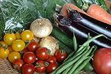 【寿山のたまて箱】九州野菜 鹿児島の野菜ソムリエが選ぶ季節の有機無農薬野菜8~9品セット