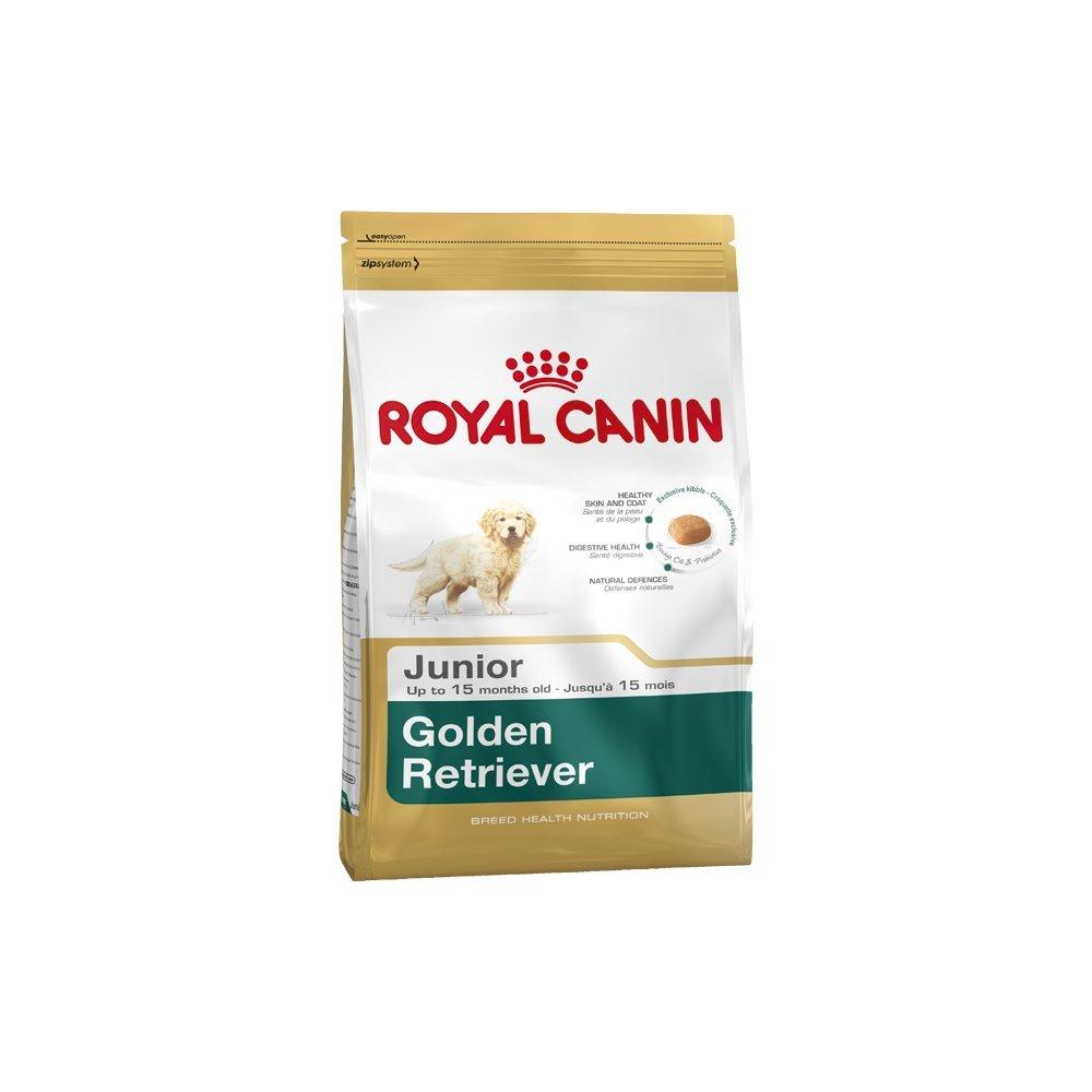 Royal Canin - Croquettes pour golden retriever junior - 12 kg 02RCGRJ12