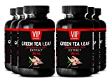Catechin supplements - Green Tea Leaf Extract 300mg - Fat loss supplement (6 Bottles - 360 Capsules)