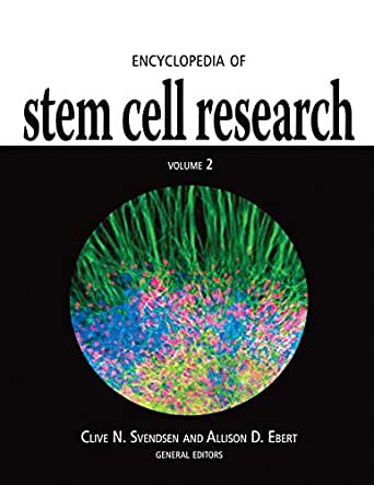 Current and Potential Uses of Stem Cells