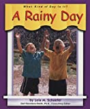 A Rainy Day, Lola M. Schaefer, 0736886222