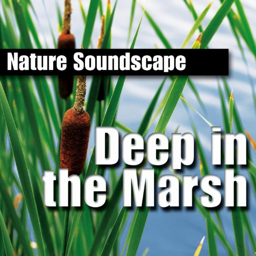 - Deep in the Marsh (Nature Sounds Only)