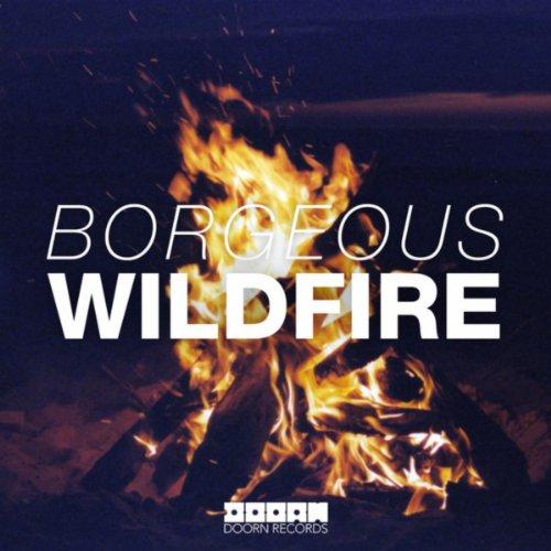 Wildfire (Original Mix)