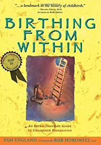 Paperback Birthing from Within: An Extra-Ordinary Guide to Childbirth Preparation Book