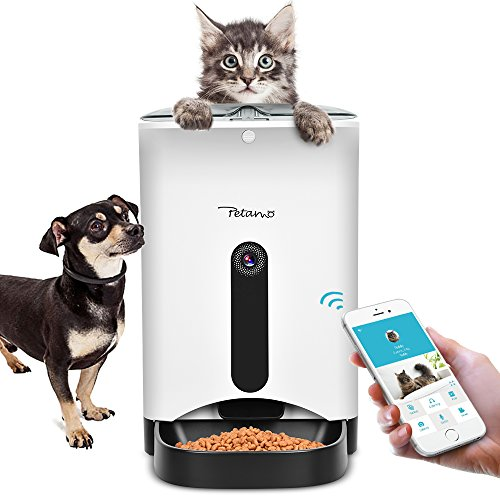 the a dec right have may for busy be lc lifestyle or kl feeders is if them petcha mz dog prefer automatic feeder answer feeding an your dogs to you