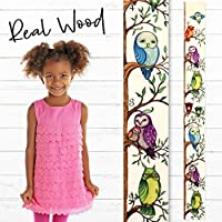 Growth Chart Art Presents: Wooden Growth Chart Ruler for Boys & Girls to Measure Height of Kids, Nursery Wall Decor - Owl