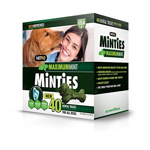 VetIQ Minties Dental Dog Treats, Value 2 Pack 80 Count Total
