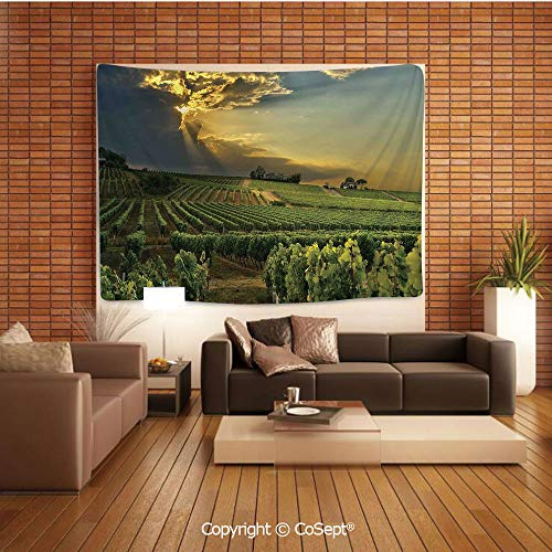 PUTIEN Tapestry Wall Hanging Wall Decor,Sunset Over The Vineyards of The South of France Sunbeams Cloudscape Picture Print,Tapestry Art Print Tapestry for RoomGreen Yellow Gray ()