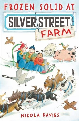 Frozen Solid at Silver Street Farm ebook