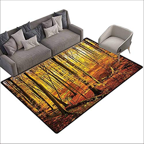 Floor Bath Rug Forest Autumn in Brakelbos Theme Forest Fall Park Golden Sun Rays Image Print Personality W6' x L7'10 Yellow Orange Olive