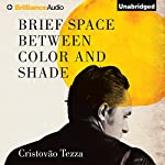 Brief Space Between Color and Shade | Cristovão Tezza,Alan R. Clarke (translator)