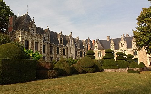 Home Comforts Peel-n-Stick Poster France Chateau Du Pin Castle Poster 24X16 Adhesive Sticker Poster Print - Chateau Le Pin