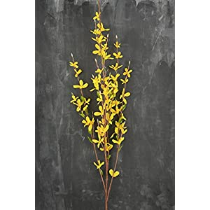 "Richland Forsythia Flower Yellow 38"" 89"