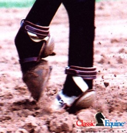 CLASSIC EQUINE ★ HEAVY DUTY LEATHER SKID BOOTS