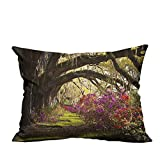 YouXianHome Sofa Waist Cushion Cover Romantic Forest Trees Flowers Garden Spring Time Sunbeam