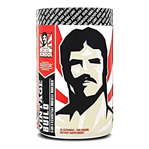 VINTAGE BUILD - The Essential 3-in-1 Muscle Builder - Post Workout Recovery with BCAA, Creatine Monohydrate, and L-Glutamine Powder (Lemon Lime), 347 Grams, 30 Servings