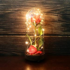 CVHOMEDECO. Battery Operated w/Timer LED Lighted and Red PU Rose with Fallen Petals in a Glass Dome, Great Gift for Valentine's Day Wedding Anniversary Birthday 92