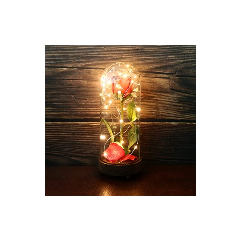 silk flower arrangements cvhomedeco. battery operated w/timer led lighted and red pu rose with fallen petals in a glass dome, great gift for valentine's day wedding anniversary birthday (dia. 4-1/2 x h 11-1/4 inch)