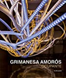 img - for Grimanesa Amor s: Ocupante book / textbook / text book