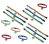 Dog Collar Bracelets - Novelty Jewelry and Bracelets (12 Pack)