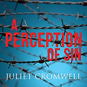 A Perception of Sin Audiobook