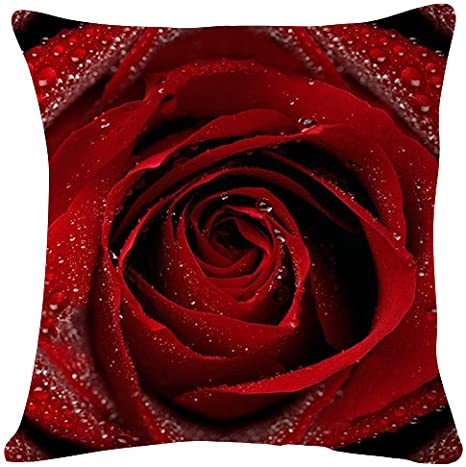 Amazon Com Rose Petals Drops Flower Throw Pillow Case Cushion Cover For Sofa Couch Double Sided Printing 18x18 Inches Home Kitchen