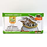 100th Monkey Mushroom Farm – Elm Oyster Mushroom Garden Kit – Grow Your Own Gourmet Mushrooms Inside Your Garden, Kitchen, Pantry, Shed, Green House, or Even Bedroom!