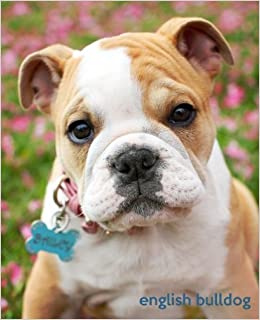 English Bulldog A Gift Journal For People Who Love Dogs English