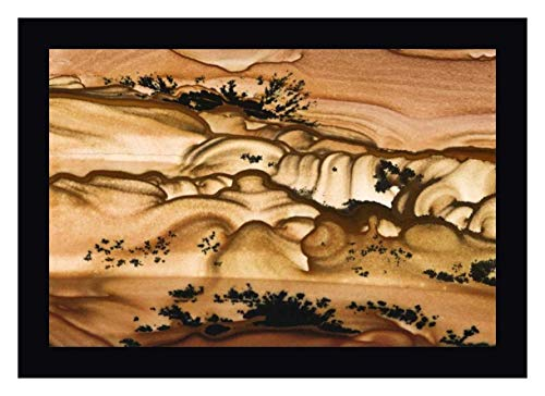 (Oregon Close-up of Biggs Picture Jasper Stone by Dennis Kirkland - 11