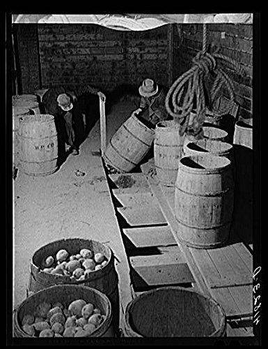 Amazon com: HistoricalFindings Photo: Caribou,Maine,ME