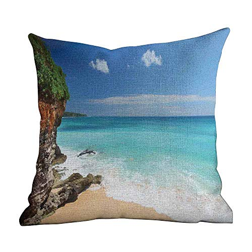 - Matt Flowe Throw Pillow Cover for Sofa,Seaside Decor,Tropical Beach Seaside Cliff Under Clear Sky Coastline of Bali Island,Indonesia,Twin Sides Custom Pillow Cases Cover for Bedroom22 x22