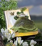 Outdoor Solar LED Lighted Frog Book Dreamer Figurine Detailed Resin Decorative Whimsical Animal Garden Art 8.5 L x 7 W x 5.5 H