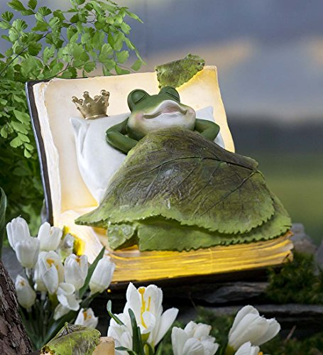 Outdoor Solar LED Lighted Frog Book Dreamer Figurine Detailed Resin Decorative Whimsical Animal Garden Art 8.5 L x 7 W x 5.5 H by Wind & Weather